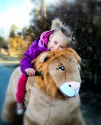 Kommer med 6 elektriske dyr og 2 «dyrepassere» som organiserer aktivitet. Barna kan kjøre runder a 3 min.